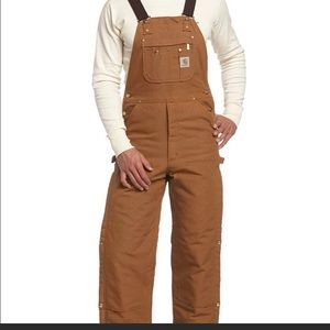 Carhartt Insulated Vintage Overalls